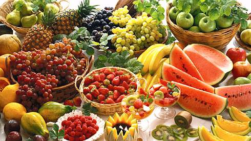 Vegetarian diets reduce death rates:Study