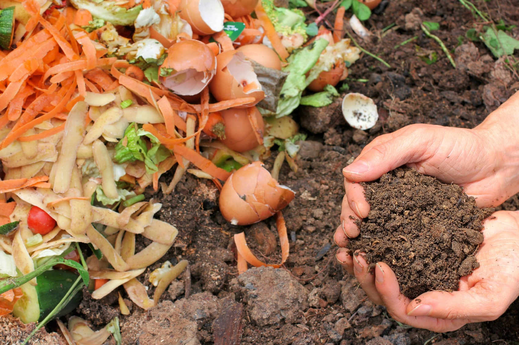 dispose-of-organic-waste-in-pots-make-compost-use-it-in-kitchen-garden
