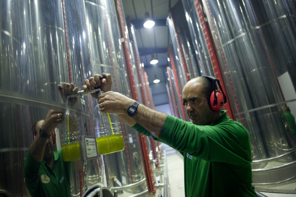 Olive oil can make plastic
