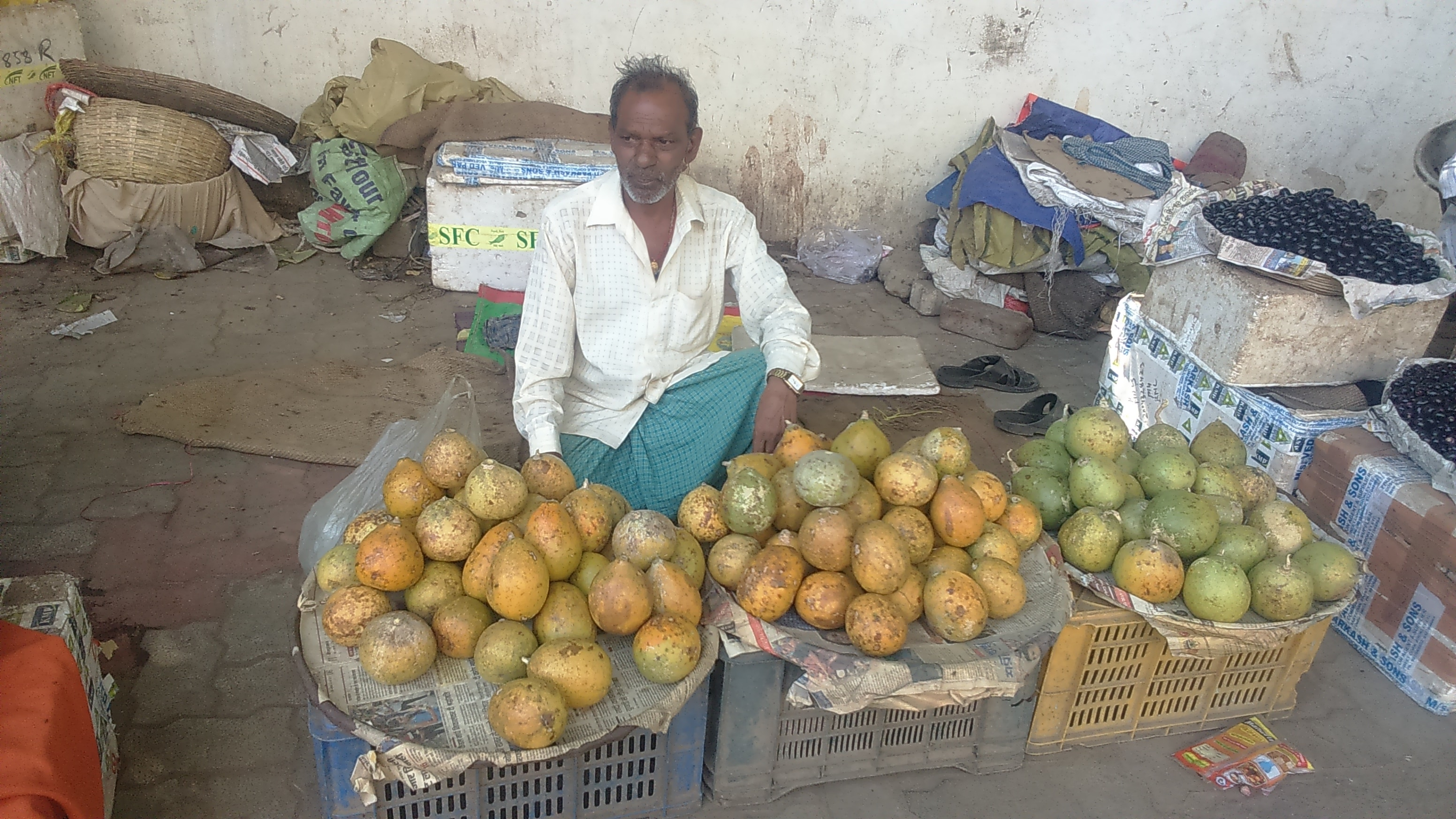 <p>Selling now is Bael,Aegle Marmelos,or golden apple,stone apple.It is a species of tree native to Jharkhand,Bihar,West Bengal and Bangladesh,is considered to be sacred by Hindus.Its&#8230;