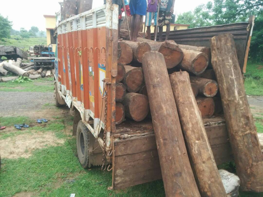 <p>Pakur DFO Rajnish Kumar led team seized precious wood packs of Sal,Jamun and Sisam worth Rs&nbsp;2 lakh from a truck near Gopikandar road,Kharoni village in Pakur district,Jharkhand.The&#8230;