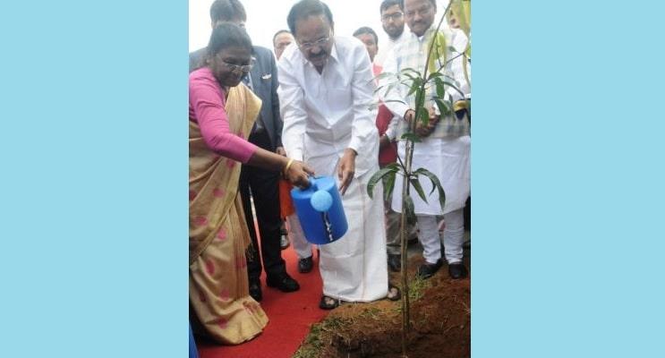"""<p>Vice-President of India Venkaiah Naidu along with governor Draupadi Murmu planting a tree at a Government school during a programme on """"Swachhta Hi Seva"""" at Lalkhatanga…"""