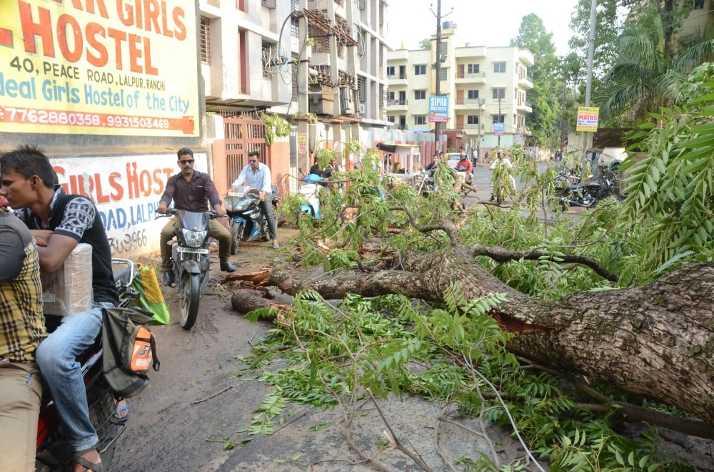 <p>Drops of rain brought relief to people.They&nbsp;walked&nbsp;around a fallen&nbsp;&nbsp;tree after rainstorm during unseasonal rain in Ranchi on Monday.</p>