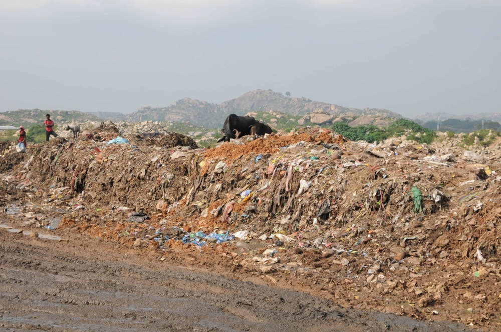 <p>Ragpickers search for reusable items on World Environment Day at a municipal waste dumping site at Cheri near Ranchi on Monday.</p>