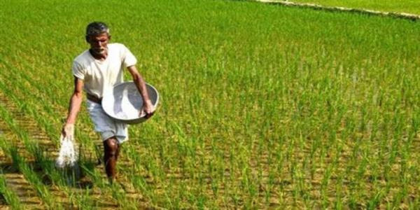 Double bonanza for Jharkhand farmers with the introduction of Krishi Ashirwad Yojna