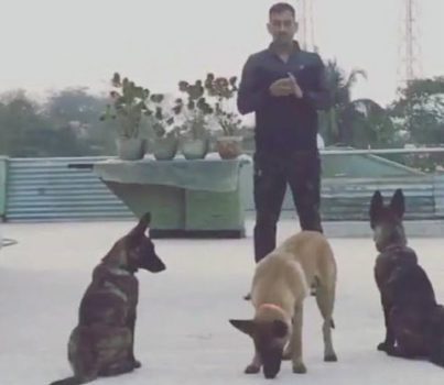 Dhoni plays with his 3 dogs on top floor of his house in Ranchi