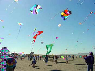 kites-fly-in-sky-for-swachhata-drive-thanks-to-ias-officer