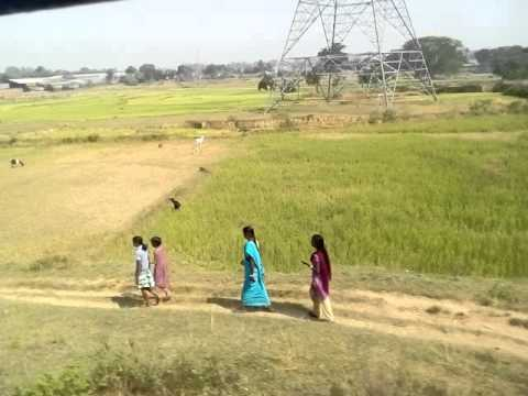 Paddy farmers of Jharkhand in distress