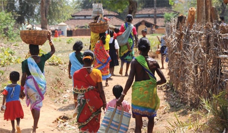 Drinking rotten rice-beer takes a heavy toll in Simdega