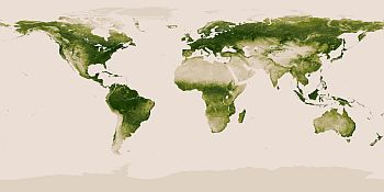 Earth's green belt captured by Satellite
