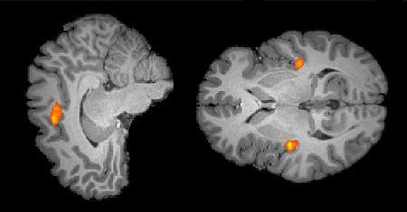 Solve Math with ease,avoid brain feel pain