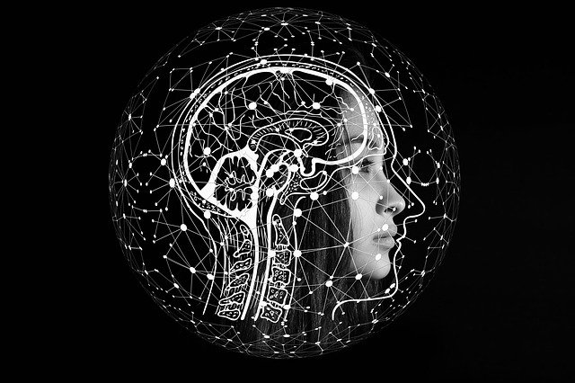 Scientists develop Artificial Synaptic Network that Mimics Human Brain