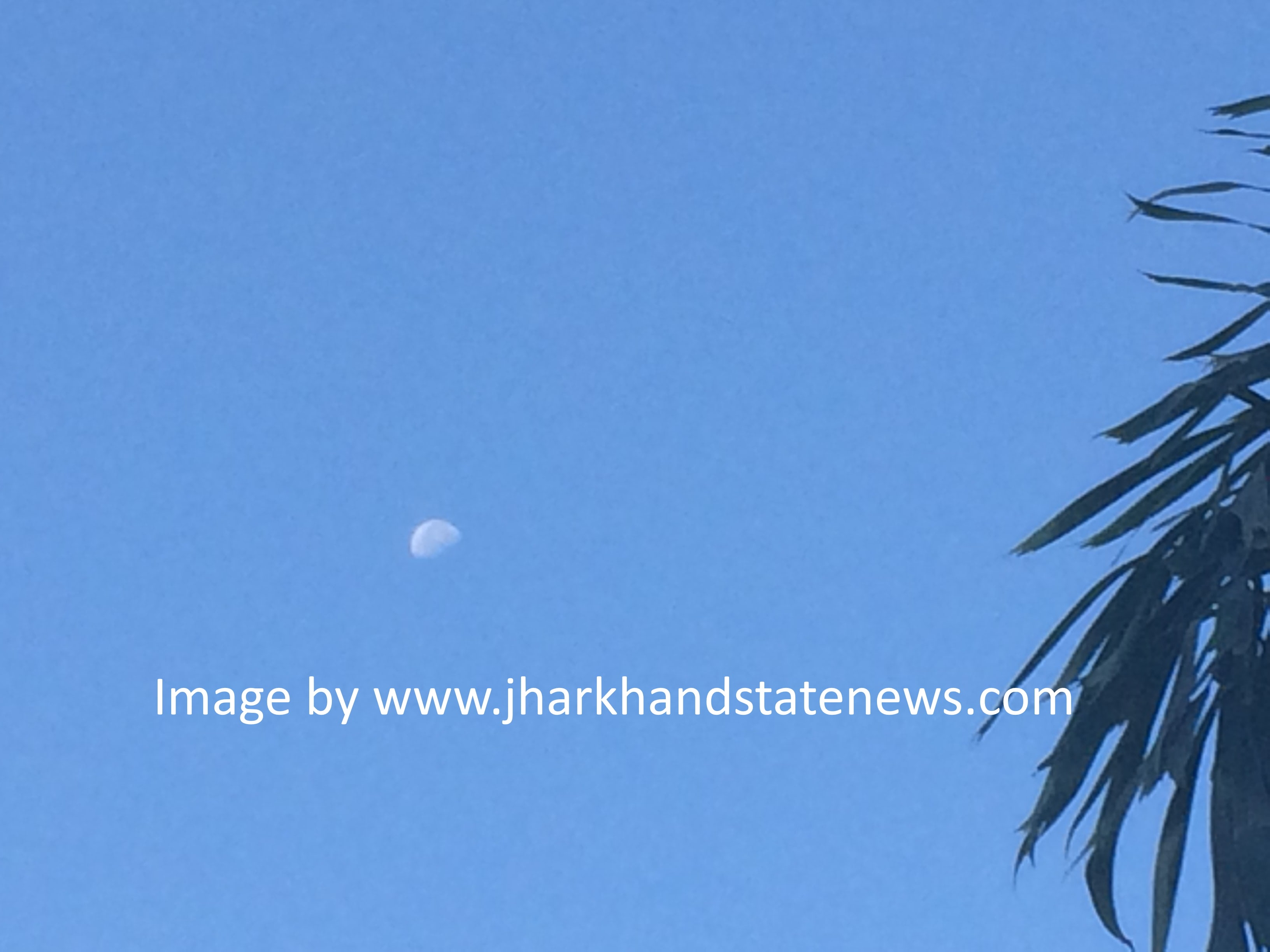 morning-walker-spots-blue-sky-moon-in-ranchi
