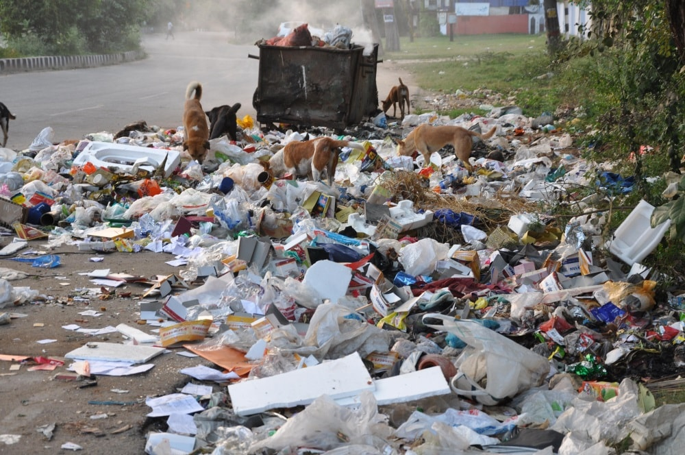 <p>Waste garbage dumping by RMC at a road site on the occassion of the World Environment Day, in Ranchion Monday.</p>