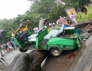 <p>One person died and an Auto was badly damaged after a tree fell on it at Govind Nagar under Ratu police station area due to heavy rains lashing Ranchi and its adjoining areas in…