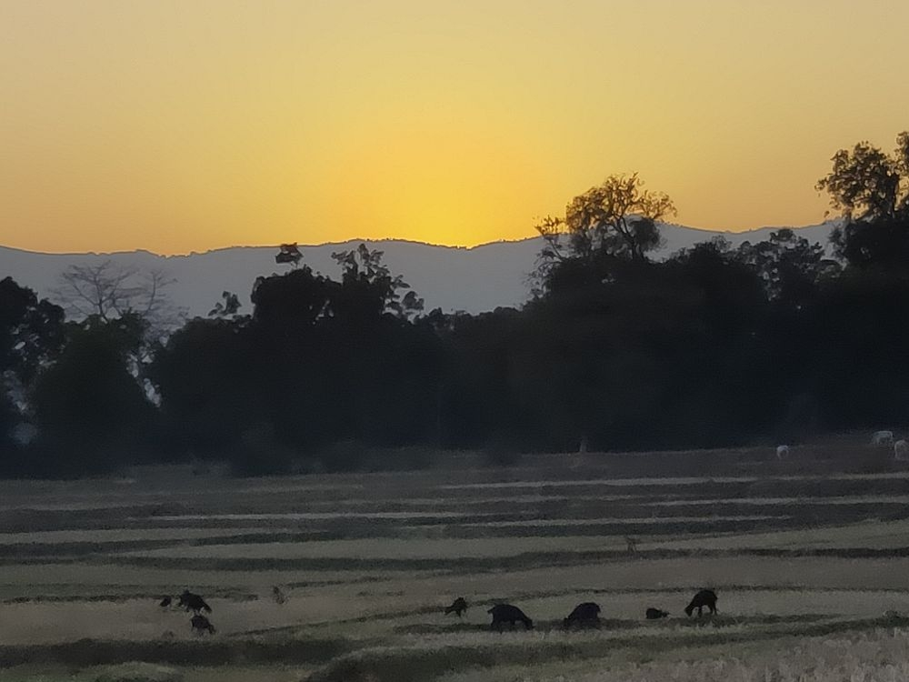 <p>As the sun sets behind the mountains, its an end of a day, an end of a year. Hope the rising sun will bring with it bundles of Joy, Happiness and Luck.</p>