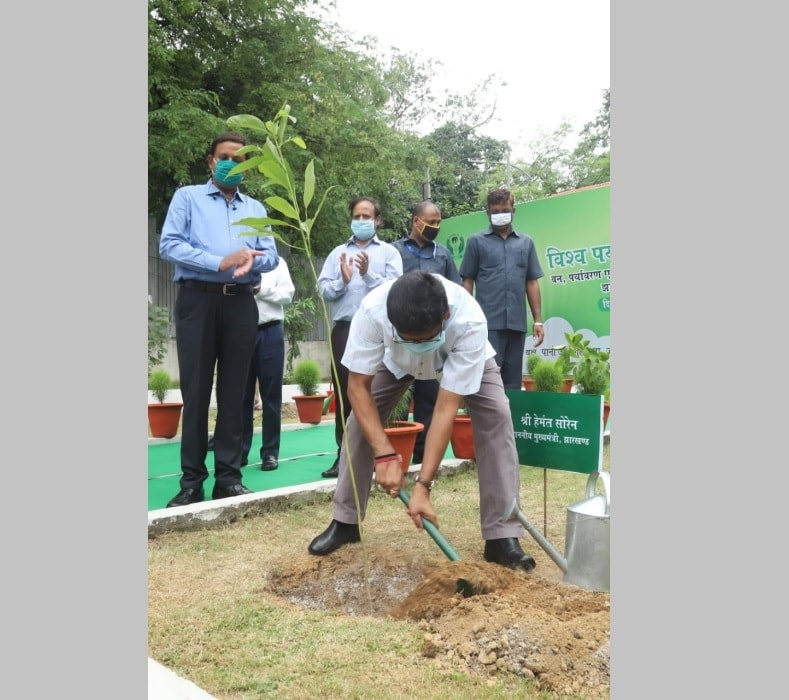 <p>Chief Minister Hemant Soren planted a tree inside the forest department of Jharkhand to mark the World Environment Day 2020 on Friday.</p>