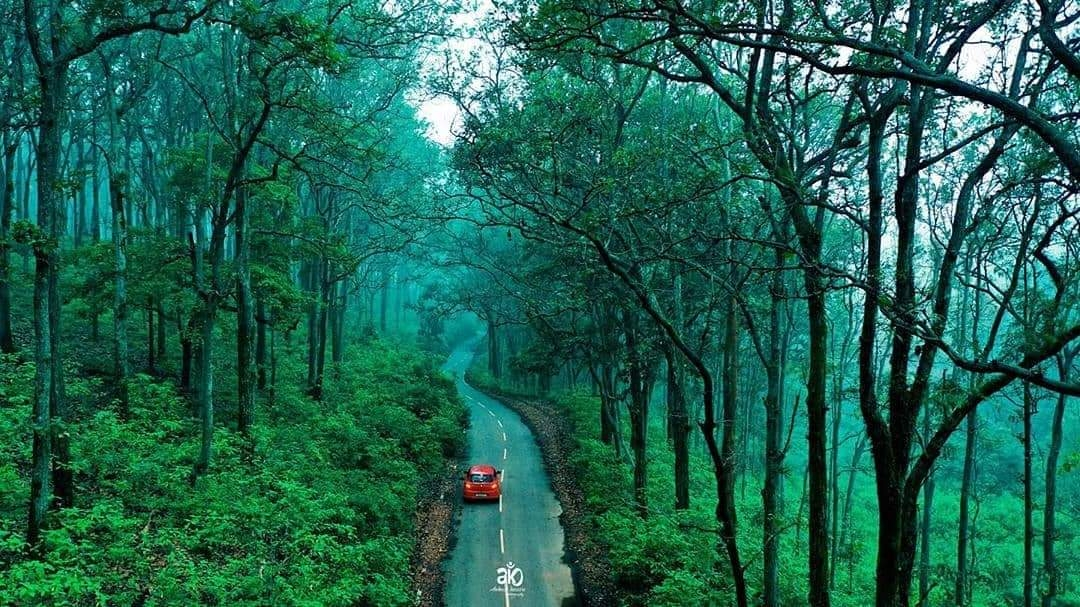 <p>Picturesque road to Netharhat in Jharkhand's Latehar district.</p>