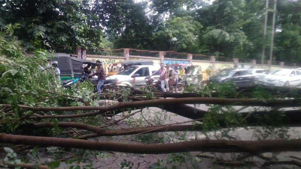 <p>राँची - बरियातू रोड में अचानक रोड के बीचो बीच पेड़ से गिरने से बड़ी दुर्घटना होते होते बची |</p>