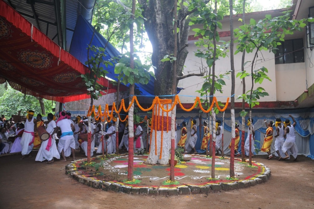 <p>On the occasion of Karma festival, a karam tree is decorated with flowers while college students dancing around it and singing traditional karam songs. </p>