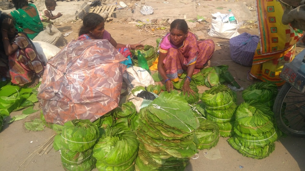 <p>Sal(Bahulia Vahil) leaf plates(Pattal).These are traditional  Adivasi product on the verge of extinction.However,it is still  sold near Mahavir Mandir,Main Road,Ranchi.These…