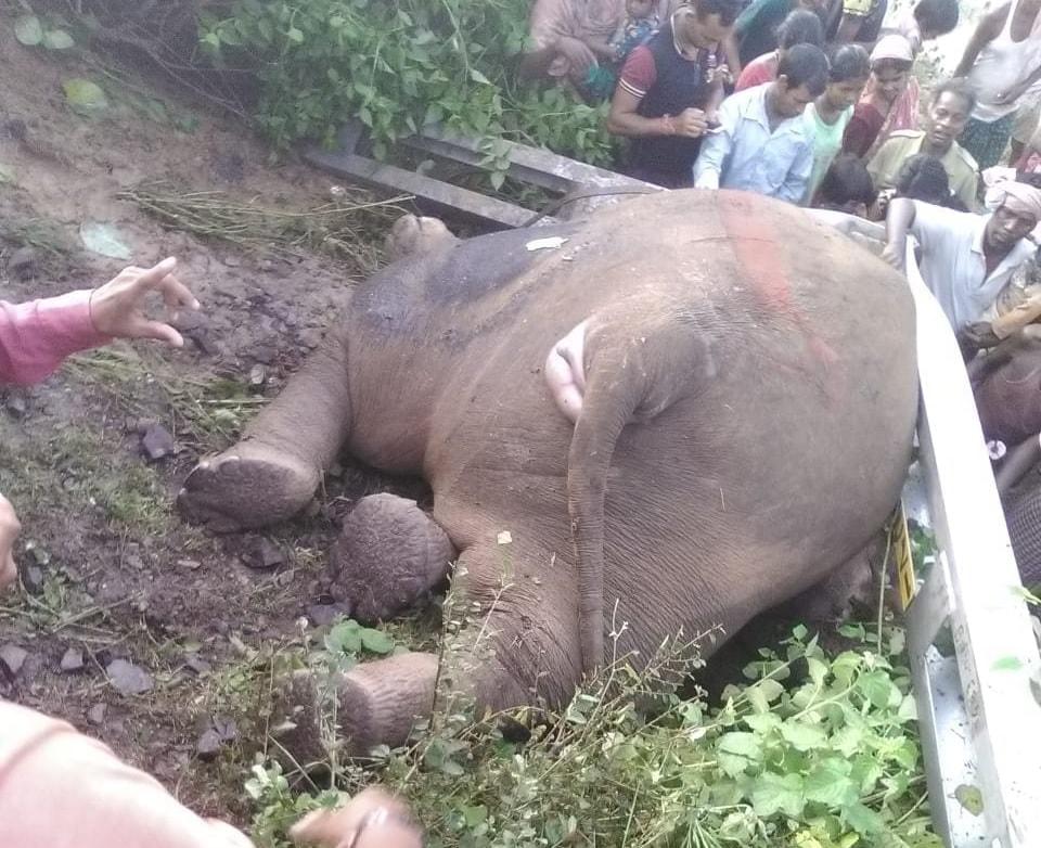 <p>जमशेदपुर। टाटा-हावड़ा रेल खंड पर देर रात चाकुलिया कानीमोहाली हॉल्ट और गिधनी स्टेशन के बीच तीन हाथियों की ज्ञानेश्वरी एक्सप्रेस ट्रेन से कटकर मौत हो गई है। इस घटना में बिजली का खंभा…