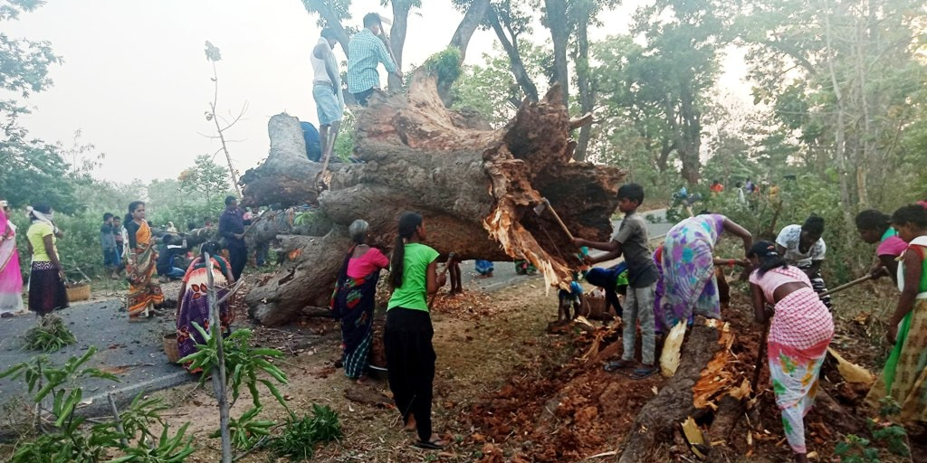 <p>Villagers lend helping hand to remove an uprooted old tree from the road after it fell due to heavy storm at Gondlipokhar in Ranchi-Purulia road on Thursday.</p>