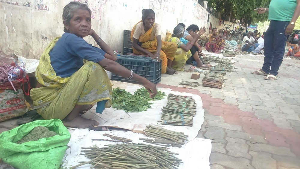 <p>A tribal woman sits near Kutchery Chowk in Ranchi and sells 'Datun' Neem Twig commonly used in rural and urban areas for cleaning teeth and healthier gums.Neem Datun is…