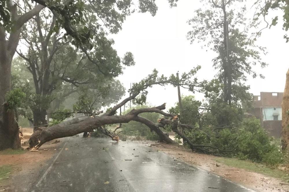 <p>राँची- राँची और आसापास के इलाकों में तेज आंधी के कारण पेड़ गिरने से सड़के हुई जाम।राजधानी के गोस्सनर कालेज के सामने और टाटीसिलवे मुरी मार्ग पर पेड़ गिरने से हुई यातायात बाधित।</p>…
