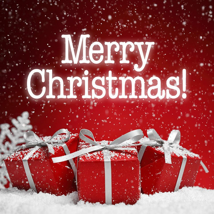 <p>We wish you all a Merry Christmas!</p>