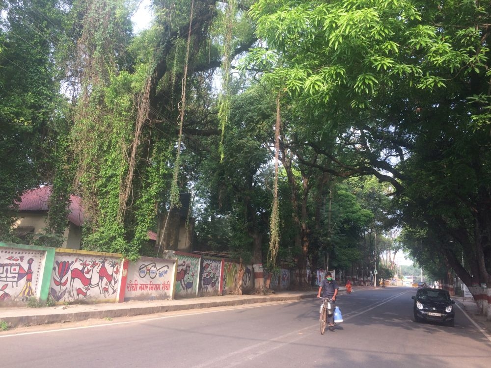 <p>Figs coming down from a tree on the road outside ATI and official residence of Jharkhand Chief Minister Hemant Soren in Ranchi is eye-catching at a time when coronavirus lockdown…