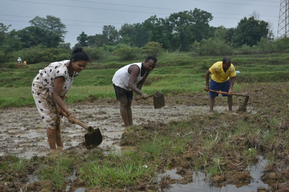 <p>With monsoon soaring rains, farmers in Jharkhand were in cheers. In the state capital Ranchi, rains have been daily affairs during the past -three-four days. As a result, farmers…