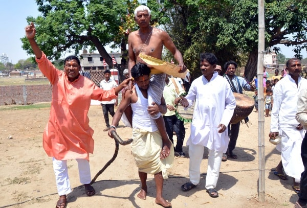 <p>Tribal Pahan performs puja at the Sal tree on the occasion of Sarhul (Tribal festival ) in Ranchi on Thursday</p>