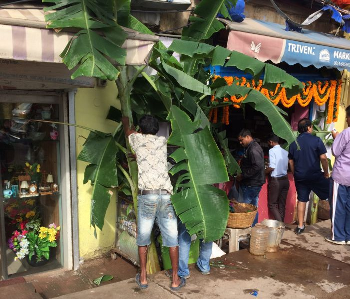hindus-put-up-banana-leaves-welcome-goddess-laxmi-on-diwali