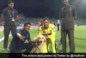 Dogs floor Dhoni in Pune