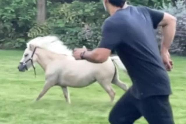 ms-dhoni-racing-with-a-horse-inside-his-ranchi-farm-house
